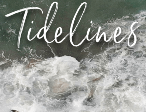 June Tidelines Submissions